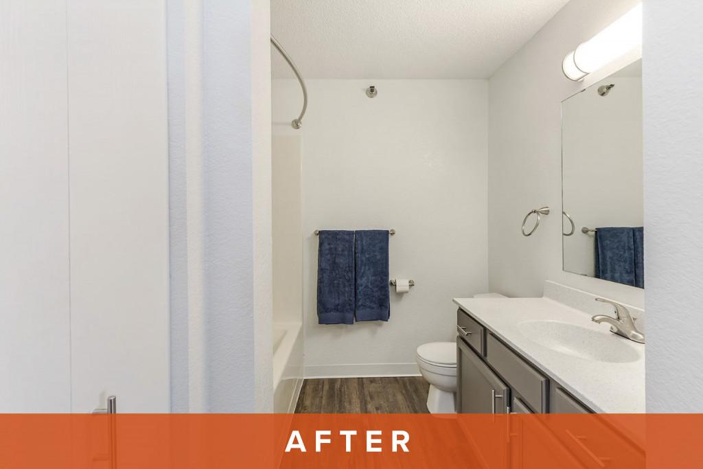 Zen Chaska After Bathroom